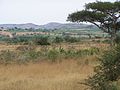 Mbarara Uganda Lake Mburo National Park.jpg