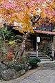 Meiji no Mori Minoh Quasi-National Park Minoh Osaka pref Japan25n.jpg