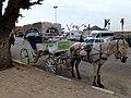 Meknes Morocco - panoramio.jpg