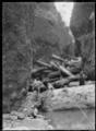 "Men with kauri logs, operating a ""bush devil"" in a gorge near Piha ATLIB 136115.png"