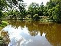 Miallet Puyraud étang aval (1).JPG