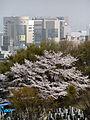 Midorigaoka 05z8014a.jpg