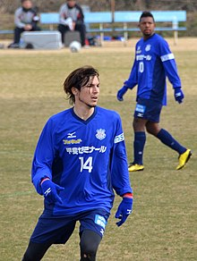 Mike Havenaar - 2011.jpg