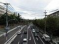 Minamigoyo - panoramio (21).jpg