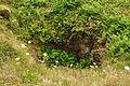 Mine shaft north of Rinsey Head (7726).jpg