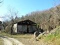 Monte Lozzo, ex cava 09.jpg