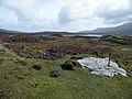 Moorland at Loch Druidibeag National Nature Reserve - geograph.org.uk - 1512081.jpg