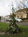 Mottram Christmas tree 2014 (1).jpg