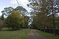 Mount Wilson NSW 2786, Australia - panoramio (74).jpg
