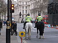 Mounted police on Whitehall (6).JPG