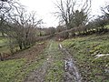 Muddy lane near Brithdir - geograph.org.uk - 1118530.jpg