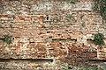 Mura di Piazza XXIV Luglio, Empoli (5).JPG