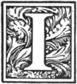 Muusmann-Matadora-I.png