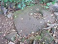 Mystery stone - geograph.org.uk - 579839.jpg