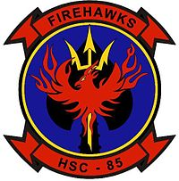 NEW FIREHAWK small.jpg