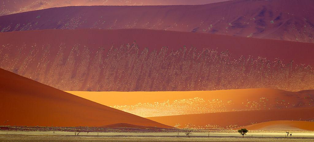 Namib-Naukluft Sand Dunes (2011)