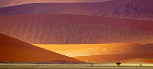 Namib-Naukluft National Park - Sand dunes near Sossusvlei