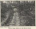 Narrow gauge railway in the Bois de Forest (Signal Corps Photo).jpg
