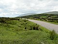 Narrow road - A838 - geograph.org.uk - 500606.jpg