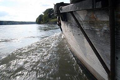 Nationalpark Donau-Auen Orth an der Donau 2012 Tschaike 07.jpg