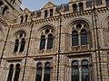 Natural History Museum.002 - London.JPG