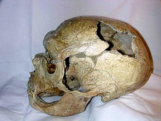 La Chapelle-aux-Saints 1 - The Neanderthal skull from La Chapelle aux Saints.