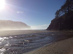 Oregon wikipedia for Neskowin beach