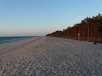Polski: Plaża w czerwcu