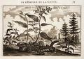 Nieuhof-Description-générale-de-la-Chine-1665 0857.tif