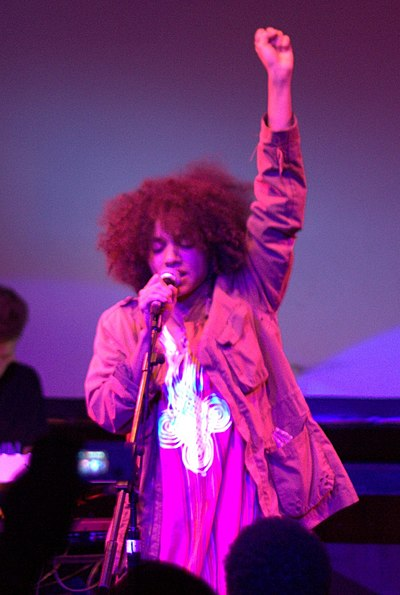 Picture of a band or musician: Nneka