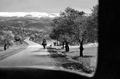 North Lebanon The old road to Bcharre - Cedars.png