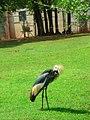 OKC Zoo May 2007 - 58 (497242979).jpg