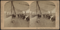 Ocean Pier, Long Branch, N.J, from Robert N. Dennis collection of stereoscopic views 6.png
