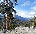 Olmsted View, Tioga Pass Road 5-20-15 (18531522123).jpg