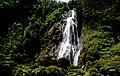 On Milford Sound. (8366216147).jpg