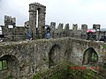 On top of Blarney Castle - panoramio.jpg