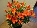 Orange Lilien.jpg