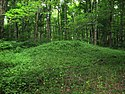 Orators Mound
