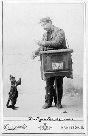 Street organ - An organ grinder with a monkey, 1892.