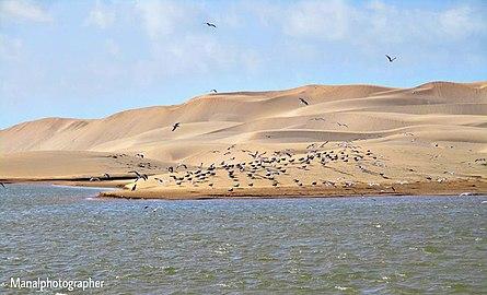 Oued Chbika EL OUATIA TANTAN.jpg