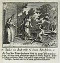 Ovid Met 5 - Star Lizard - Johann Ulrich Krauss 1690.jpg