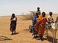 Převoz chrastí v Súdánu 001.jpg