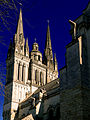 P1320015 Angers cathedrale St-Maurice rwk.jpg