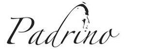 Padrino (web framework)