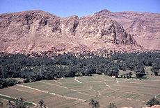 Palmeraie de Tinerhir Vallée du Todra.Maroc.jpg
