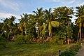 Paradise Resort, Kumbakonam (13) (37464114522).jpg