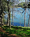 Path by the Lake 4-15 (21199752560).jpg