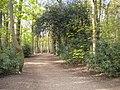Path in Ram Wood, Roundhay Park (geograph 5435444).jpg