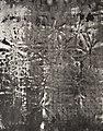 Paula Klien Artist - Exhibition Extremos Líquidos - Artwork Marga Moon Ridas - 2017.jpg