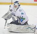 Pavel Poluektov 2013-01-07 (2).jpg